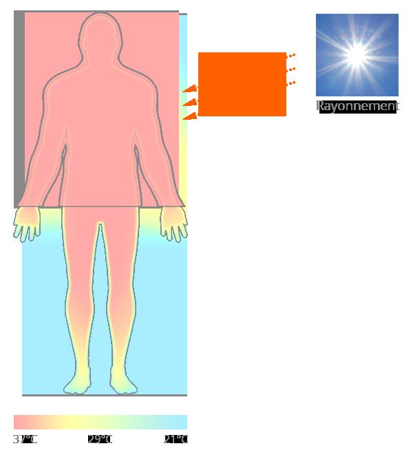 Mécanismes d'échanges de la chaleur et surchauffe